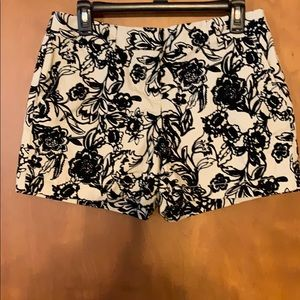 NWT Ann Taylor the loft shorts
